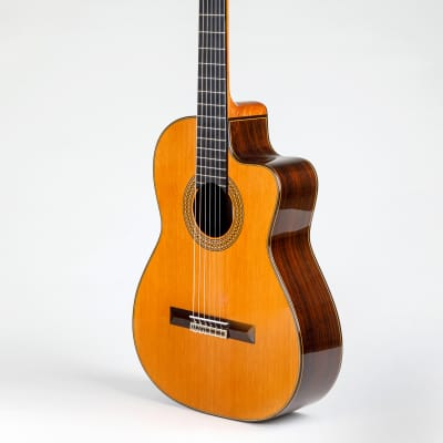 Pavan TP-20 Acoustic Cutaway Spanish Classical Guitar for sale