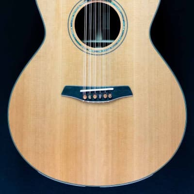 Furch - Yellow Plus - Grand Auditorium - Cedar Top - Rose Wood B/S - 12 String for sale