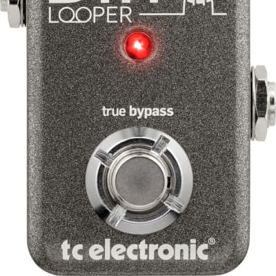 Tc Electronic Ditto Looper Effetto Looper A Pedale for sale