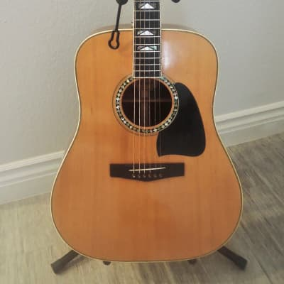 Vintage Tama acoustic model TM-107    1977 natural gloss finish for sale