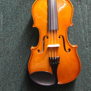 Palatino VN-450 Allegro Ebony 4/4 Full-Size Violin Outfit w/ Case, Bow