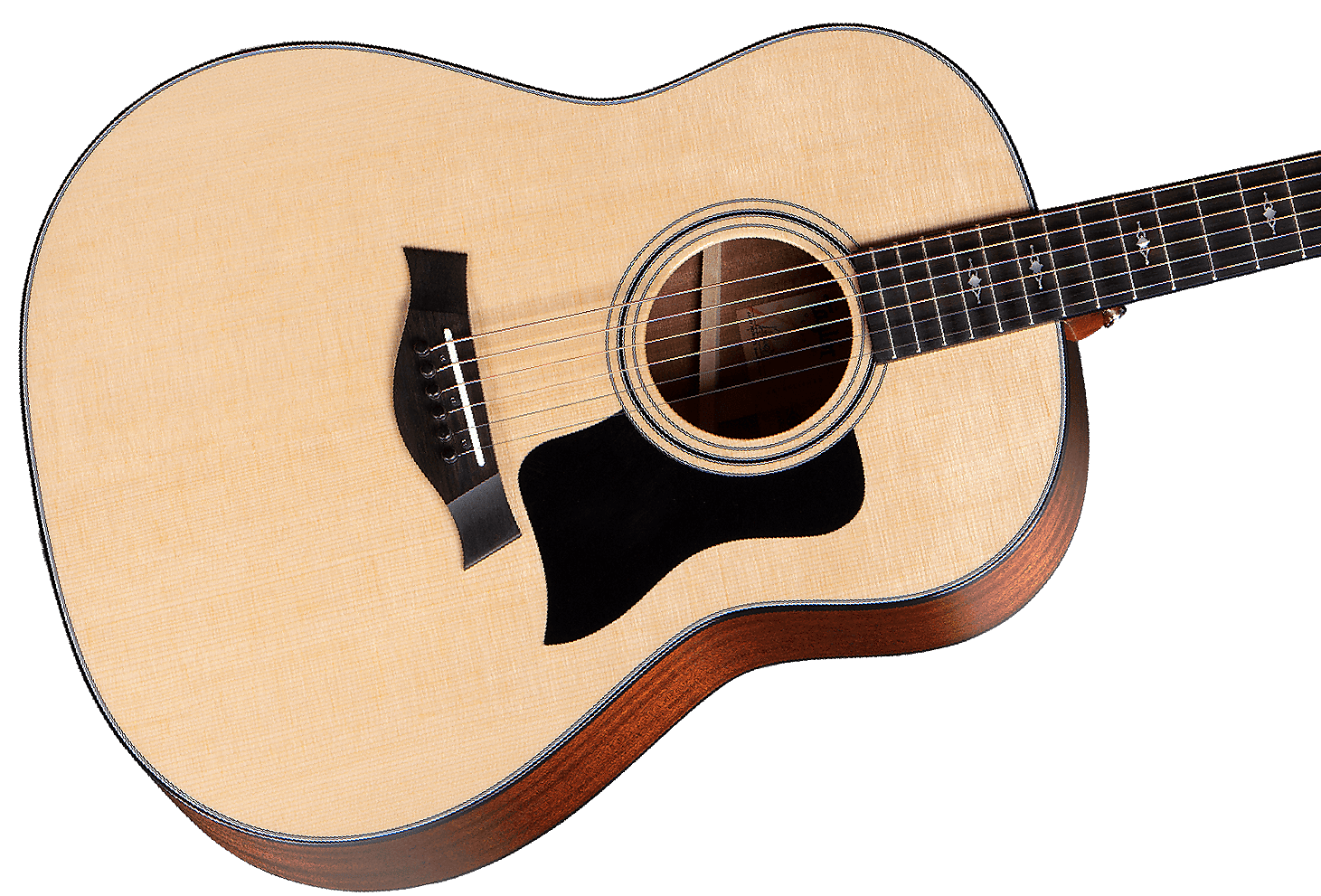 NEW! Taylor 317 Sitka Spruce Top Sapele Body Grand Pacific V-Class Acoustic  Guitar Authorized Dealer