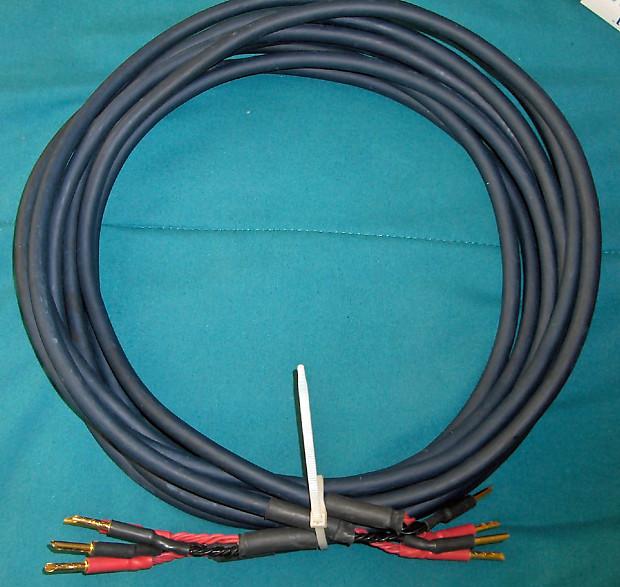 Apature BL-8 12\' pr. Silver over Copper Speaker Cable | Reverb