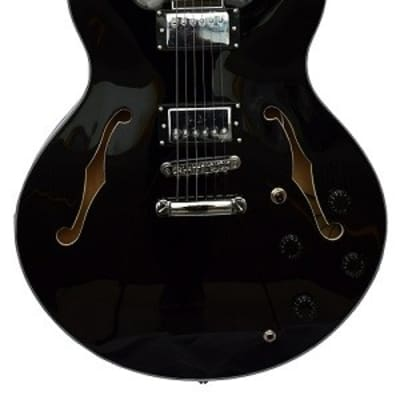 Le Marquis F1000 Semi-Hollow Body Guitar Black for sale