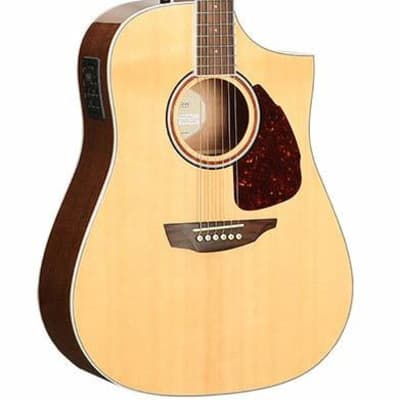 Samick Dreadnaught acoustic electric guitar for sale