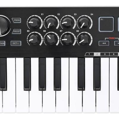 Samson Graphite M25 25-Key USB MIDI DJ Keyboard Controller For PC, MAC SAKGRM25