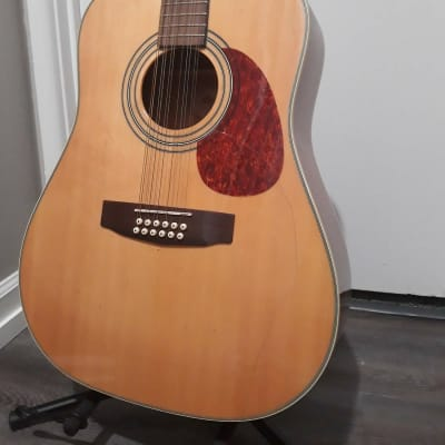 Cort 12 String ACOUSTIC   Spruce