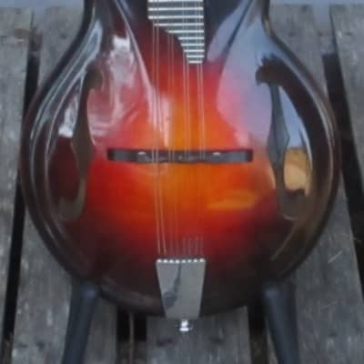 Rigel S100 acoustic/electric mandolin for sale