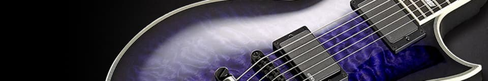 LV Guitars