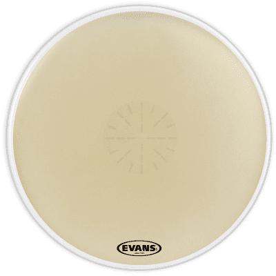 """Evans CB3614SD Strata 1400 Power Center Reverse Dot Concert Bass Drum Head - 36"""""""