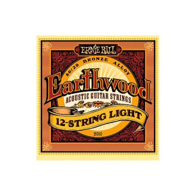 Ernie Ball 2010 Earthwood 12 Strings Acoustic