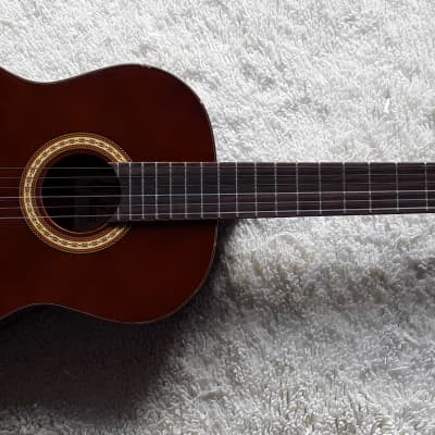 Palmer Tanis Classical Guitar (Potential Project Acoustic Guitar) for sale