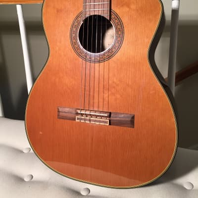 Takamine TC132SC Classical Series Acoustic/Electric Nylon with Cutaway & hard case