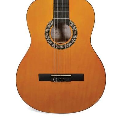 Samson Carlo Robelli Classical Acoustic Guitar - CRC94144X for sale
