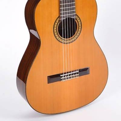 Esteve Classic Series 6PS-CD classic guitar for sale