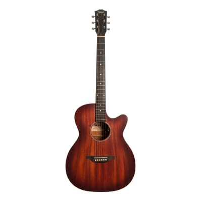Tokai Terra Nova M3 Model Contemporary Cutaway Acoustic-Electric Guitar (Vintage Sunburst Satin) for sale