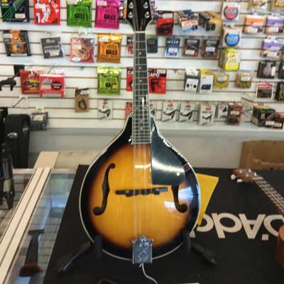 Savannah SA100 for sale