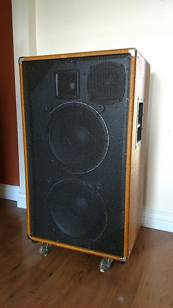 Low Down Sound (LDS) Custom 900W 1212/6/1 Bass Cabinet Tweed | Reverb