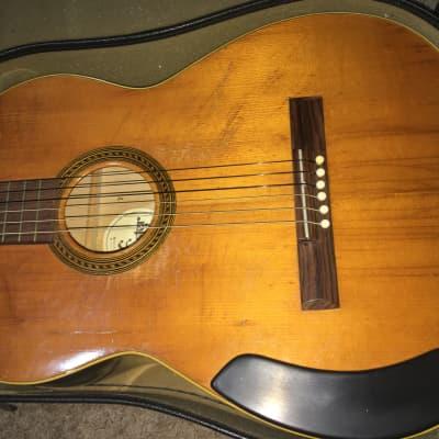 Jester nylon acoustic for sale