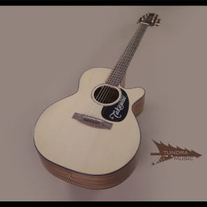 Takamine EG440SC Acoustic/Electric Dreadnought - Natural (411) for sale