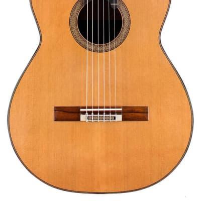 Dominique Delarue 2013 Classical Guitar Cedar/CSA Rosewood for sale