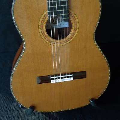 2020 Darren Hippner Helion Brazilian Rosewood Concert Classical Guitar