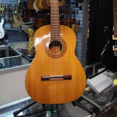 Hashimoto Gut Guitar Model #236 Maruha Musical Handmade  1960s Clear for sale