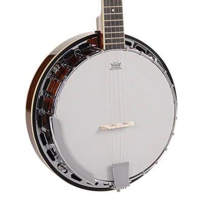 Richwood Master Series RMB-605 folk banjo 5-string for sale