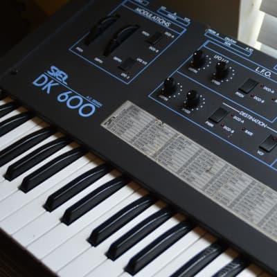 Siel DK600 Synthesizer, Analog Polysynth (w/ Hard Case)