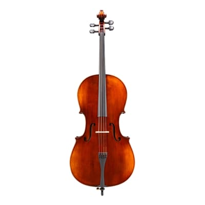 Eastman VC305 Andreas Eastman Step Up Cello - Outfit 4/4 for sale
