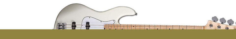VSN Guitars
