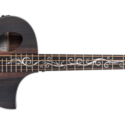 Michael Kelly DRAGONFLY 4 JAVA - Basso acustico -elettrificato - Natural Satin for sale