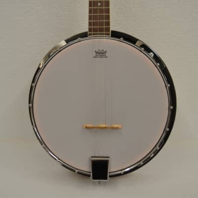 Trinity River TRTB1 Tenor 4-String Banjo for sale