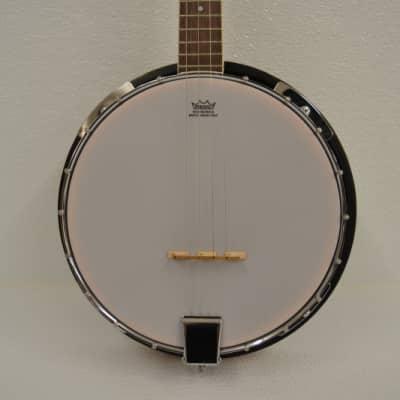 Trinity River TRTB1 Tenor 4-String Banjo for sale