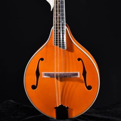 Rover Deluxe Student Sold Top A-Model Mandolin Amber for sale
