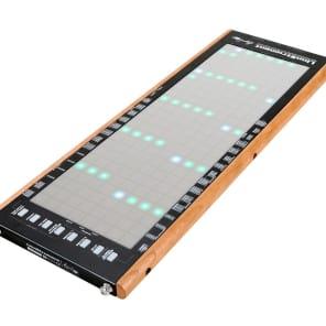 Roger Linn LinnStrument USB MIDI Controller