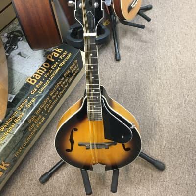 Washburn M1K A-Style Mandolin for sale