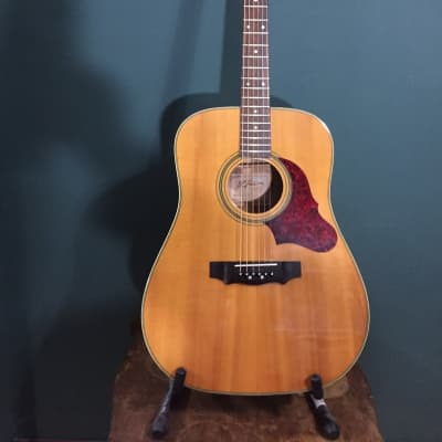 1980's B.C. Rich BR50 Dreadnought Acoustic Brazilian Rosewood for sale