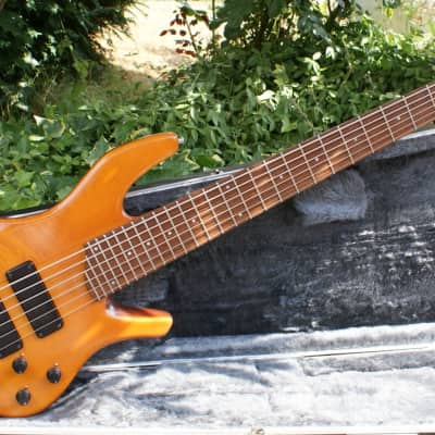 Beautiful Custom Ordered Overwater Fusion 6 String Bass Guitar & Case for sale