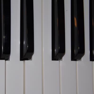 "M-Audio Venom ""black"" KEY (s)"
