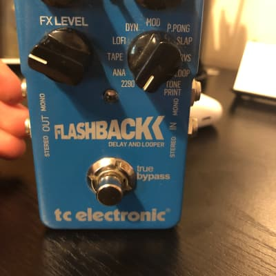 TC Electronic Flashback  Delay and Looper 2010s Blue