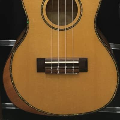Smiger UK-ARS-12-24 Solid Top Concert Ukulele