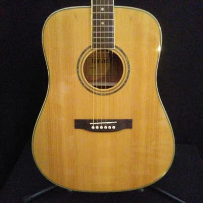 Tanara TSD-100ENT Acoustic/Electric Natural for sale