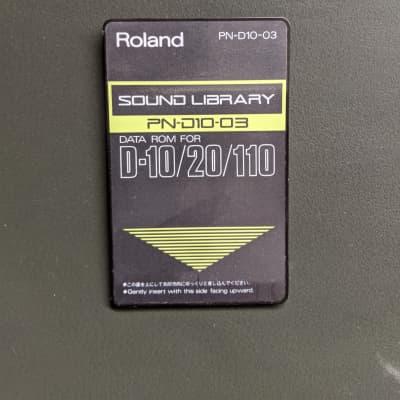 Roland  PN-D10-03  90's