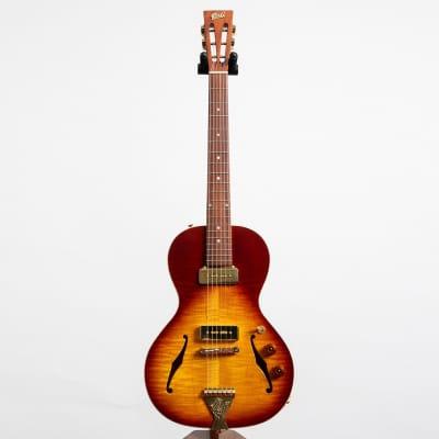 B&G Little Sister Private Build Matte Finish Electric Guitar, Tobacco Burst Non-Cutaway, P90s #890 for sale