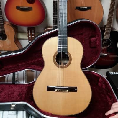 Thomas Reg'n (Regen) Konzertgitarre, Akustikgitarre, hand made 2015, Rio Palisander, ZERTIFIKAT for sale