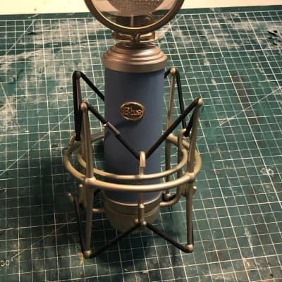 Blue Bluebird LDC mic with shockmount and pop  filter