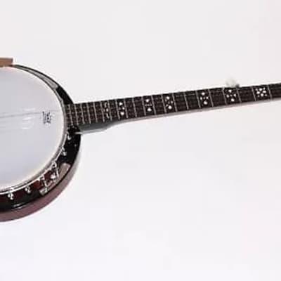 Danville USA 5 String Banjo 24 Brackets BJ24 2020 for sale