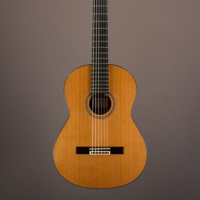 New Rein Concert Classical, Indian Rosewood/Cedar for sale