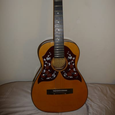 Global Natural  Double Pickguard Acoustic Guitar for sale